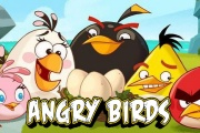 Angry Birds  Crazy